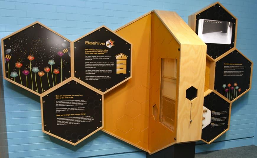 Foto da galeria oficial do Museu Questacon, área das abelhas.