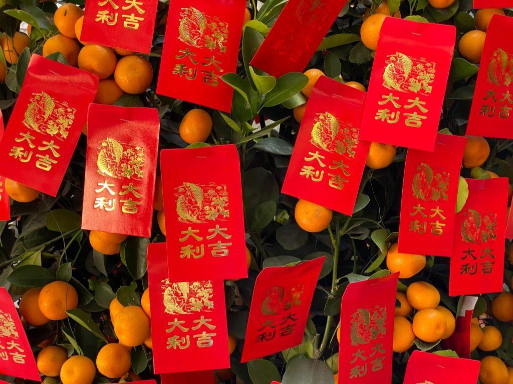 Ano novo chinês