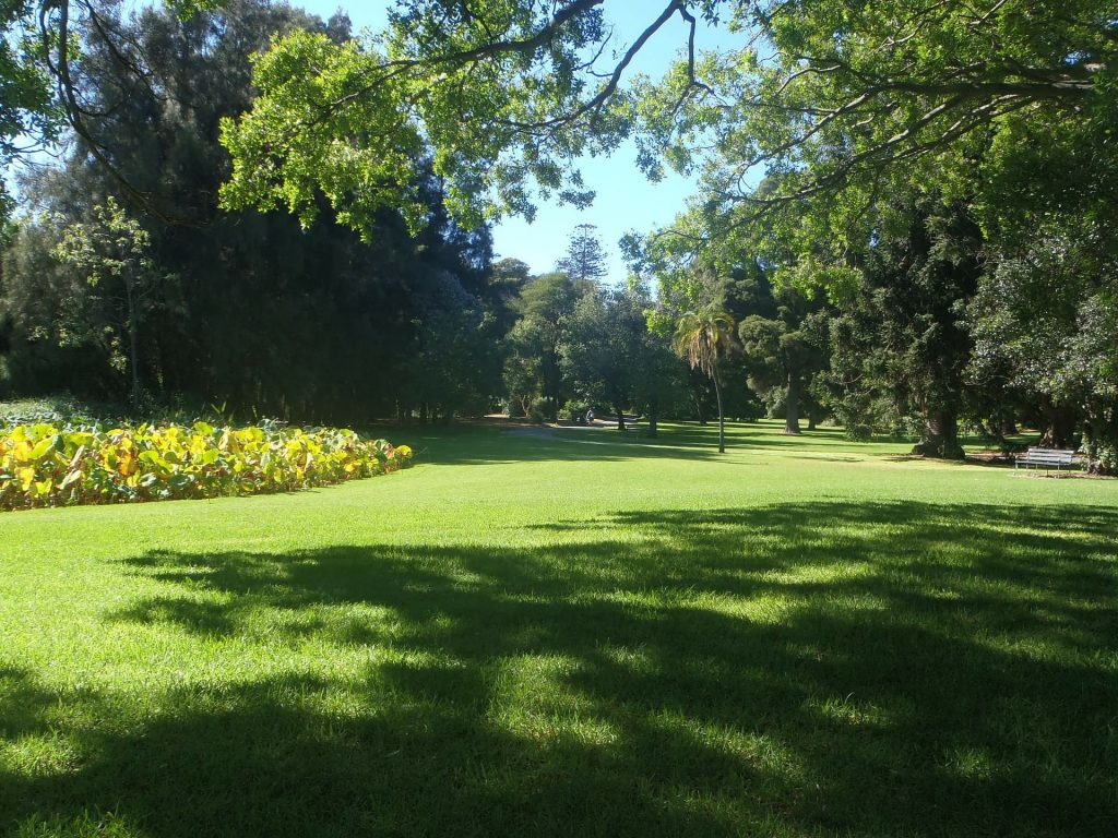 Park em Adelaide