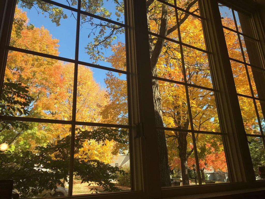 Outono em Minneapolis