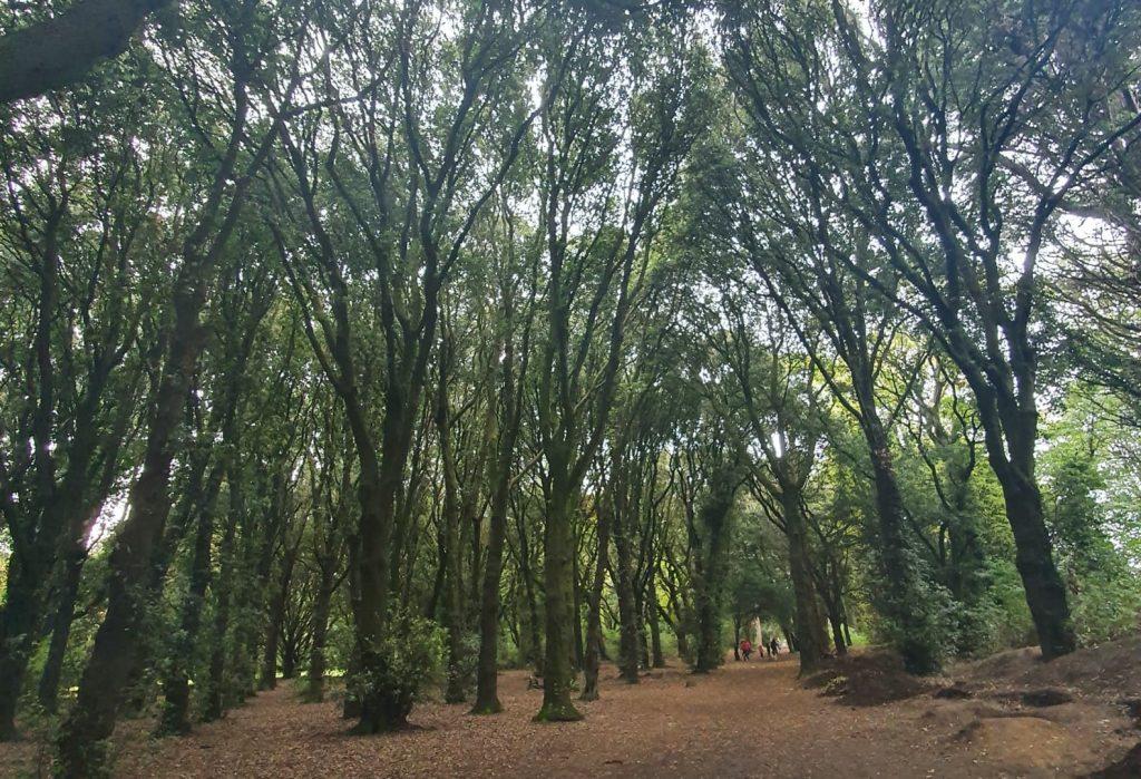 Parques de Dublin