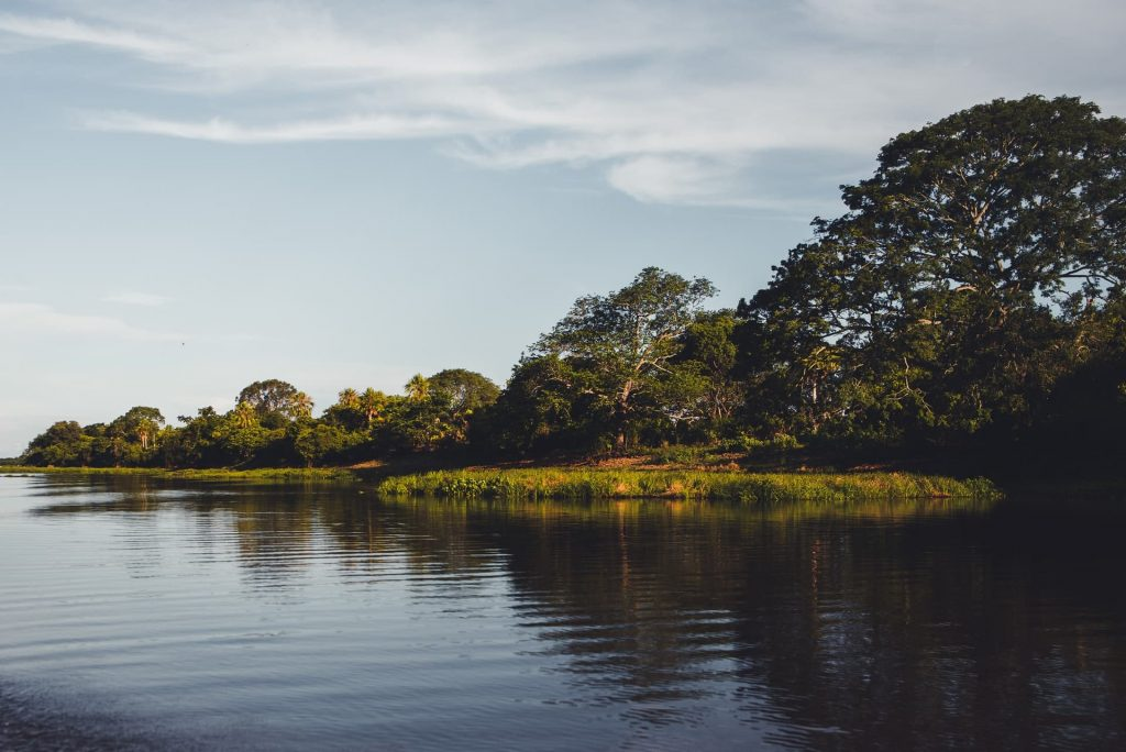 Onde fica o Pantanal