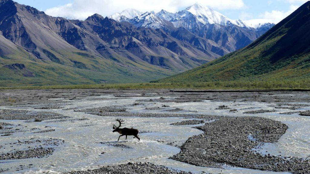 REgião intocada no Alasca